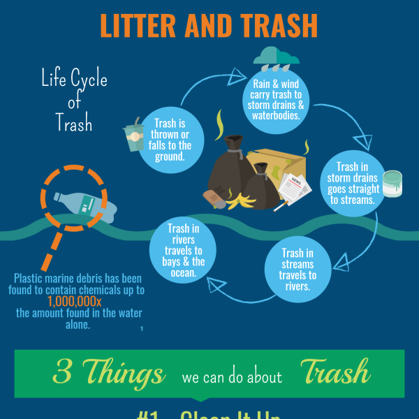Litter and Trash