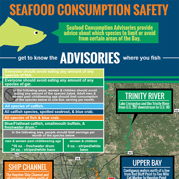 Seafood Consumption Safety