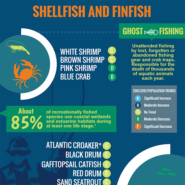 Shellfish and Finfish