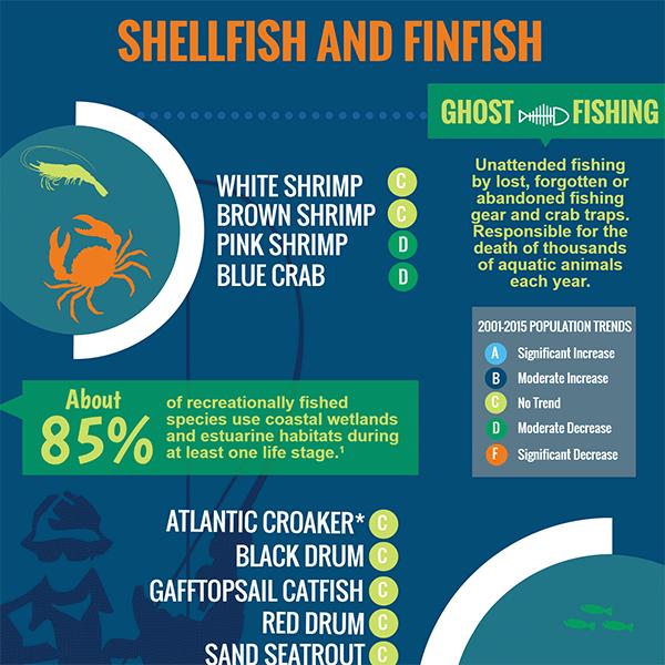 Shellfish and Finfish