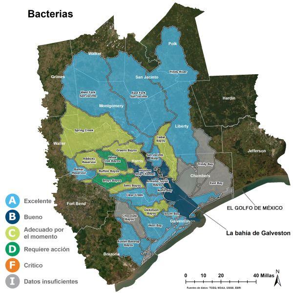 Las bacterias en el agua